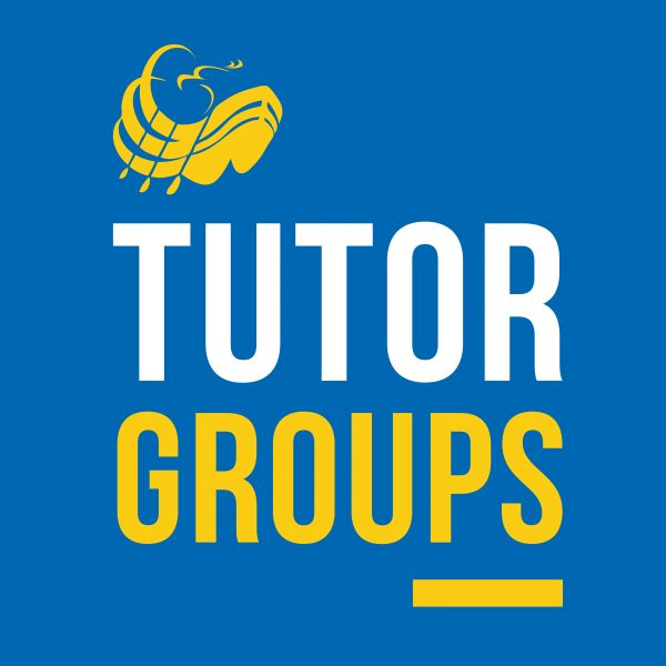 Tutor Groups